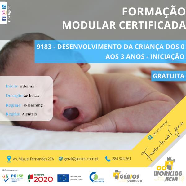 Desenvolvimento da criança dos 0 aos 3 anos – Iniciação